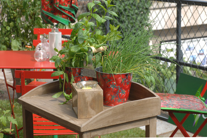 Comment cultiver un potager bio sur votre balcon