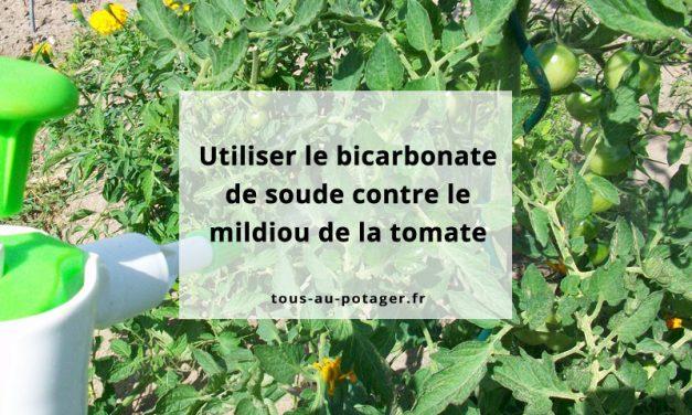 bicarbonate de sodium contre mildiou de la tomate