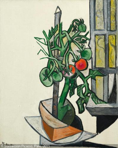 Culture des tomates : le plant de tomate de Pablo Picasso 1881-1973