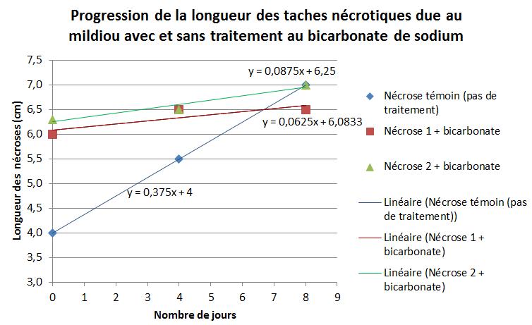 Etude du bicarbonate de sodium sur les nécroses du mildiou