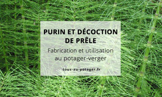 Purin et décoction de prêle : Fabrication et utilisation au jardin