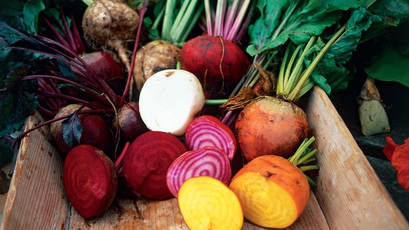presentation legumes racines