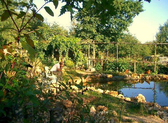 Une mare dans un jardin